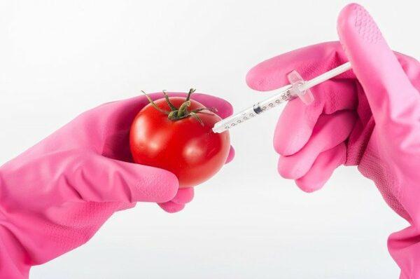 Innowacja w dziedzinie żywności